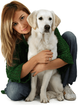 woman in a green sweater kneeling with her arms around a yellow lab.